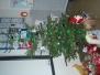 3.A - Vánoce